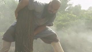 传说中的力拔千斤垂杨柳?鲁智深一招就将大树连根拔起!