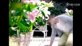 《妻子的秘密》湖南卫视宣传片 婚姻篇