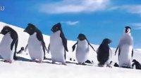 不想唱歌的舞蹈家不是好企鹅,来尬舞啊谁怕谁