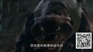 刘咚咚 《疯狂动物城》中文版MV