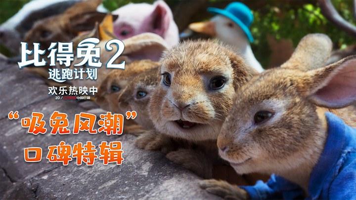 比得兔2:逃跑计划 花絮1:口碑特辑 (中文字幕)