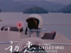 初恋这件小事MV 寂寞寂寞就好