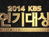 2014kbs演技大赏