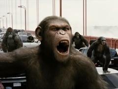 《猩球崛起3》新混剪视频 追忆凯撒成长史