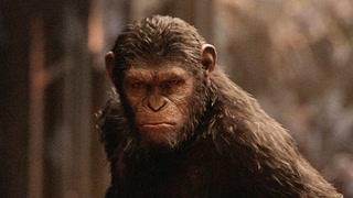 猿族两大首领战力PK
