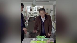 父亲去前夫家接母亲,不但没接成自己还搭进去了#三个奶爸 #张歆艺
