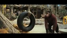 猿族崛起 片段之We'll Integrate Him