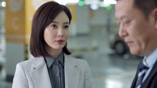 《谁说我结不了婚》田蕾大力向邢总推荐徐海峰的律所  这女的真好