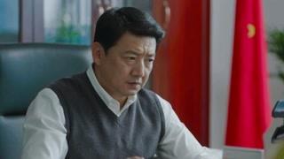 《小欢喜》看看wuli王砚辉的盛世美颜?错过后悔一生