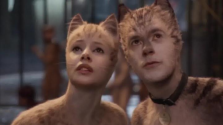 猫 预告片3