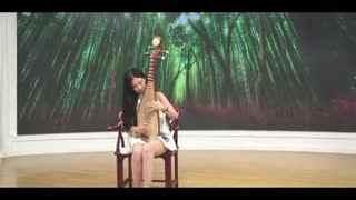 琵琶演奏 女神陈晨琵琶演奏之《十面埋伏》