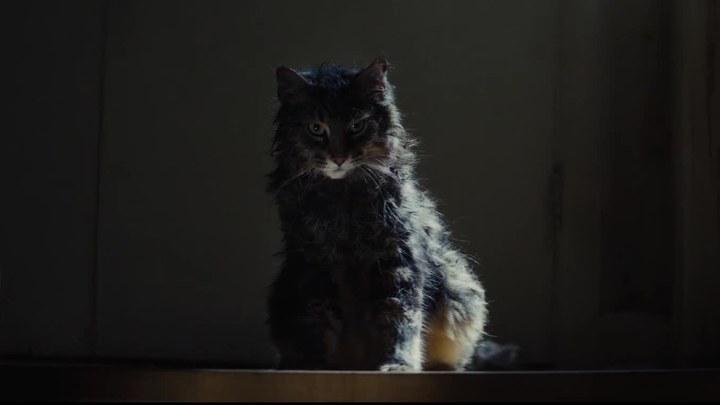 宠物坟场 电视版1 (中文字幕)
