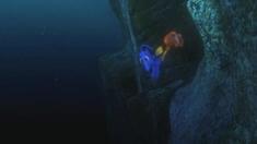 3D海底总动员 片段之Just Keep Swimming