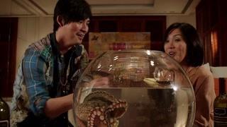 周渝民和杨千嬅靠章鱼赌球决定胜负 早说我就去买彩票了