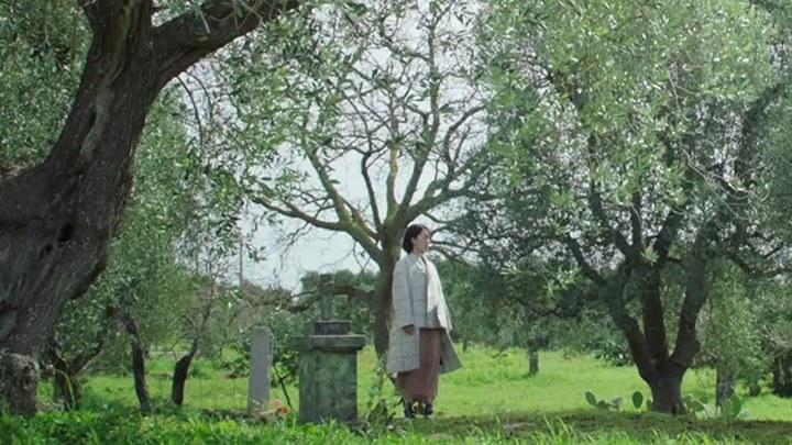 谎言西西里 MV:张碧晨演唱主题曲《为什么我好想告诉他我是谁》 (中文字幕)