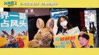 比得兔2:逃跑计划(口碑视频 观众观影现场笑成表情包 大赞兔兔可爱)