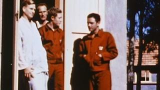 远离战争的新西兰人收养了美军将士,美军实力迅速得到恢复!
