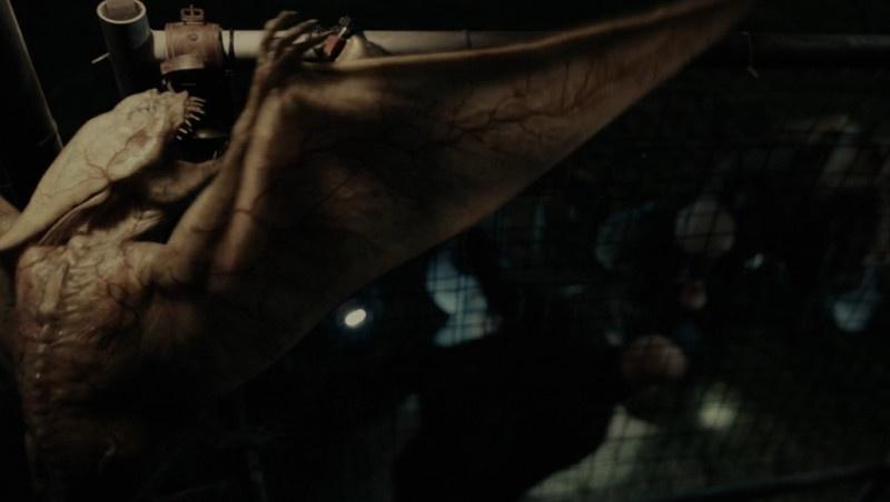 《死寂逃亡》曝光异兽袭人高能片段 惊悚刺激停不下来