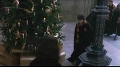 哈利·波特和密室 删节片段之蛇佬腔