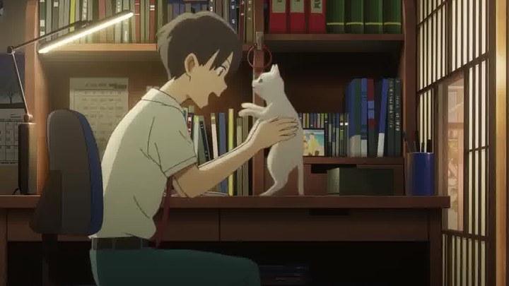 想哭的我戴上了猫的面具 中国预告片2:定档版 (中文字幕)
