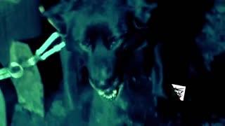 【小妖魅吐槽】恐怖!地球上最诡异的《致命怪谈》(小妖魅吐槽)第七期