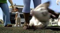 艾薇儿的首部配音电影《篱笆墙外》的宣传片及小段采访