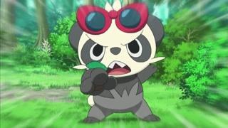超暖心的顽皮熊猫 照顾黏黏宝