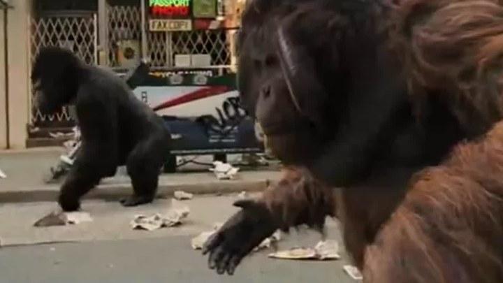 猩球崛起 片段2:冲上街头 (中文字幕)