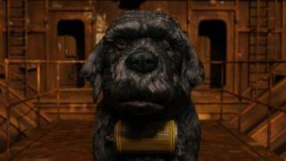 犬之岛:点点被关押 土著狗竟然食狗