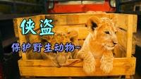 侠盗小分队宣:保护野生动物 就是保护我们自己!