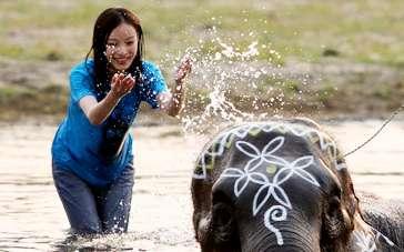 《等风来》曝动物特辑 全方位展现尼泊尔独特魅力