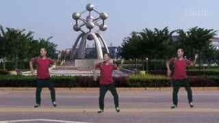 水哥广场舞大全 《一路惊喜》