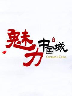 魅力中国城