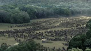 国王亲征前往刚铎 兽人真是可怕又丑陋的存在