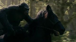 猿类向人类展开反击