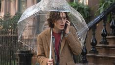 纽约的一个雨天 法国版预告