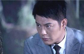 【铁核桃】第32集预告-英雄深夜树林突围伏击战