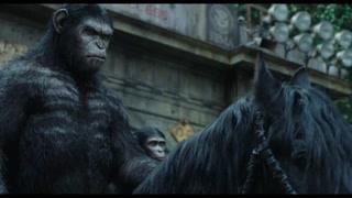 猿类大规模入侵城市 整个城市已经破败不堪