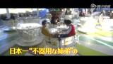 《小野寺的弟弟·小野寺的姐姐》日本预告片