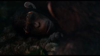 猩猩生小孩  画面温馨