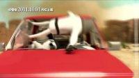 闯堂兔2疯狂马戏团(30秒预告片)