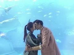 王子大人:如果你当初真的吻了我,会不会结局不一样