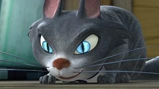 这是我见过最深的人猫之情 肥波光头强会幸福的