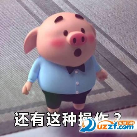 表情 qq软件qq表情 猪小屁猪头表情包图片合集最新呆萌小猪合集 爱看网 表情图片
