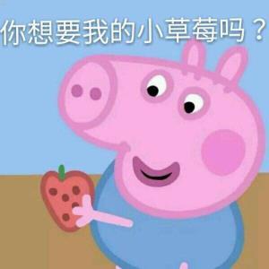 表情 小草莓击掌猫咪表情包,表情包下载,微信 QQ表情包大全 斗图助手 表情