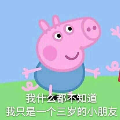 表情 小猪表情包 小猪微信表情包 小猪qq表情包 发表情 表情包大全  表情图片