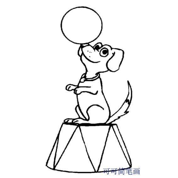 表情 小狗简笔画 动物园顶球表演的小狗简笔画 育才简笔画 表情