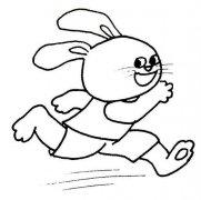 表情 兔子简笔画图片 儿童兔子简笔画大全 表情