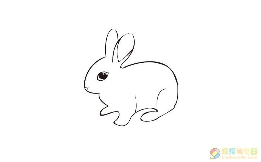 表情 5张小兔子简笔画图片 爆爆简笔画 表情