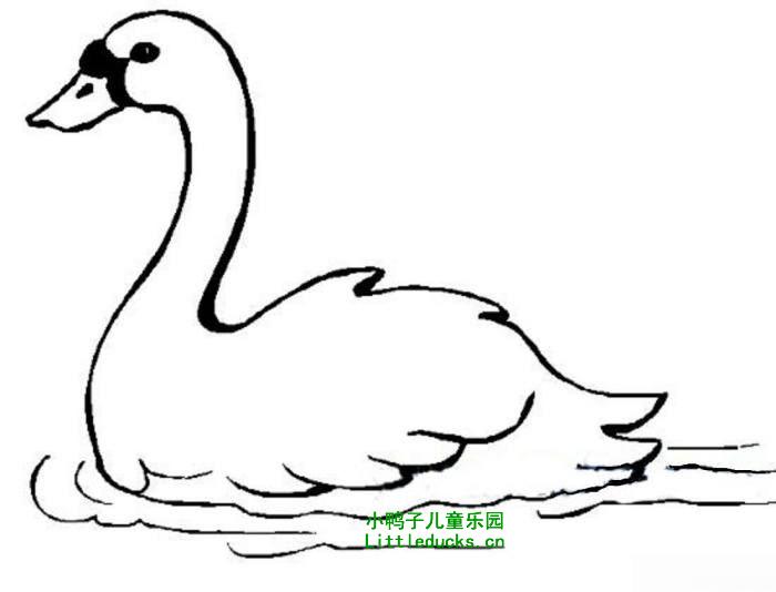 表情 鹅的简笔画图片大全 5 动物简笔画鹅动物简笔画 xyz儿童网xyz61.com 表情
